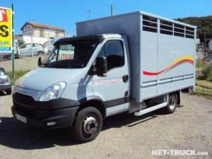 Trucks Iveco Daily Livestock body Occasion