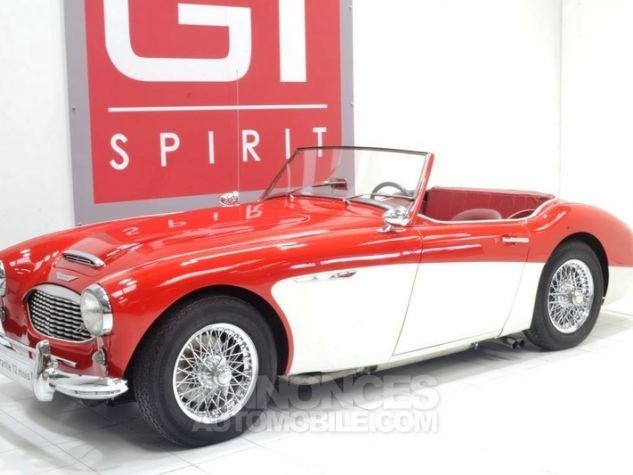 Austin Healey 3000 MK1 BT7 Colorado Red / Old English Whi Occasion - 0