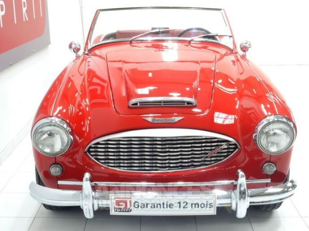 Austin Healey 3000 MK1 BT7 Colorado Red / Old English Whi Occasion - 4