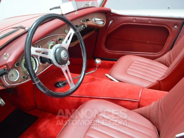 Austin Healey 3000 MK1 BT7 Colorado Red / Old English Whi Occasion - 6