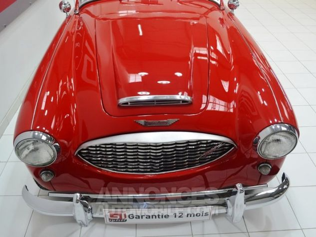 Austin Healey 3000 MK1 BT7 Colorado Red / Old English Whi Occasion - 15