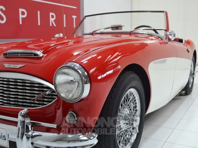 Austin Healey 3000 MK1 BT7 Colorado Red / Old English Whi Occasion - 16