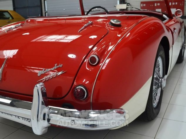 Austin Healey 3000 MK1 BT7 Colorado Red / Old English Whi Occasion - 25