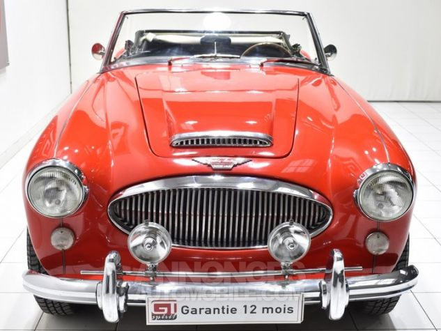 Austin Healey 3000 MK2 BJ7 Colorado Red / Old English Whi Occasion - 4