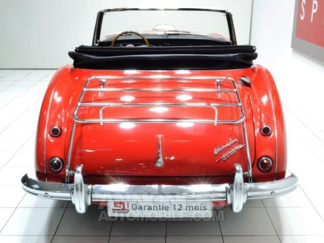 Austin Healey 3000 MK2 BJ7 Colorado Red / Old English Whi Occasion - 5