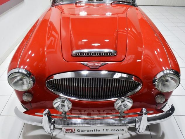 Austin Healey 3000 MK2 BJ7 Colorado Red / Old English Whi Occasion - 11