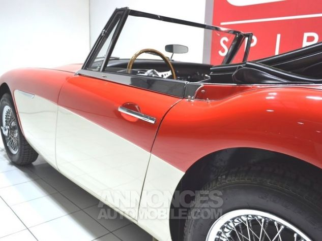 Austin Healey 3000 MK2 BJ7 Colorado Red / Old English Whi Occasion - 14