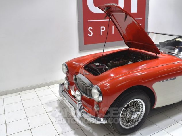 Austin Healey 3000 MK2 BJ7 Colorado Red / Old English Whi Occasion - 39