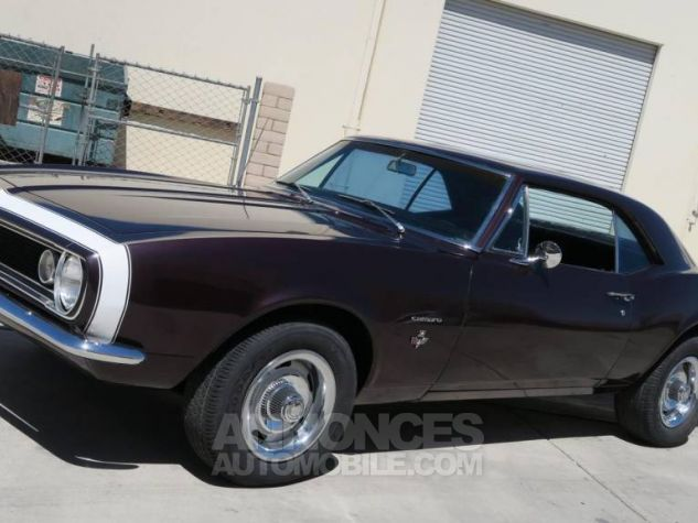 Chevrolet Camaro 1967  Occasion - 2