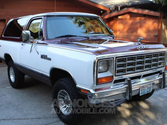 Dodge Ramcharger 1984  Occasion - 7