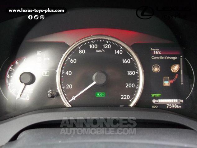 Lexus CT 200h Pack Business Euro6d-T Gris Titane Occasion - 18