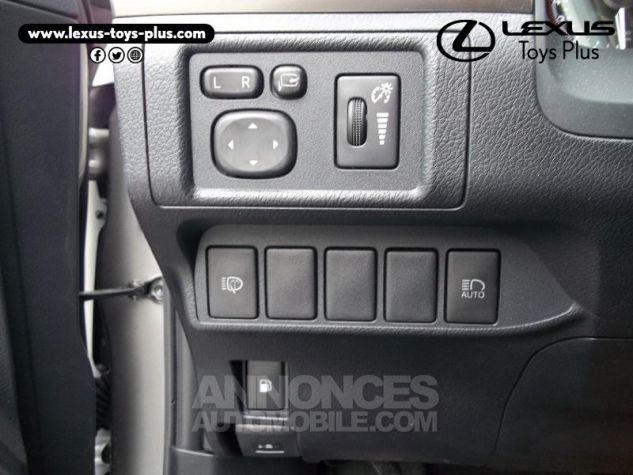 Lexus CT 200h Pack Business Euro6d-T Gris Titane Occasion - 19