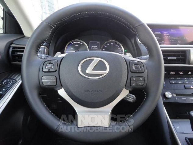 Lexus IS 300h Luxe GRIS TITANE Occasion - 6