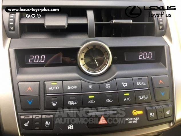 Lexus NX 300h 4WD Executive GRIS TITANE Occasion - 15