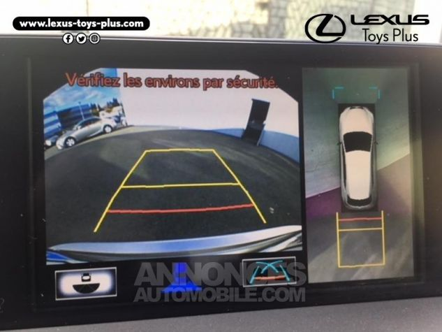 Lexus NX 300h 4WD Executive GRIS TITANE Occasion - 18