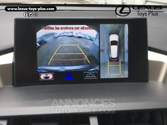 Lexus NX 300h 4WD Executive GRIS F Occasion - 2