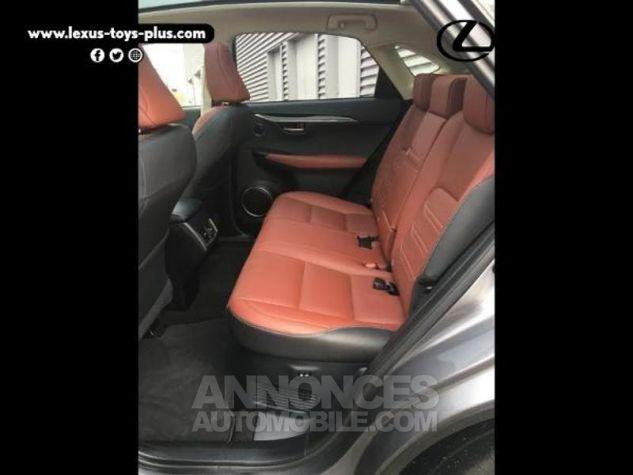 Lexus NX 300h 4WD Executive GRIS F Occasion - 6
