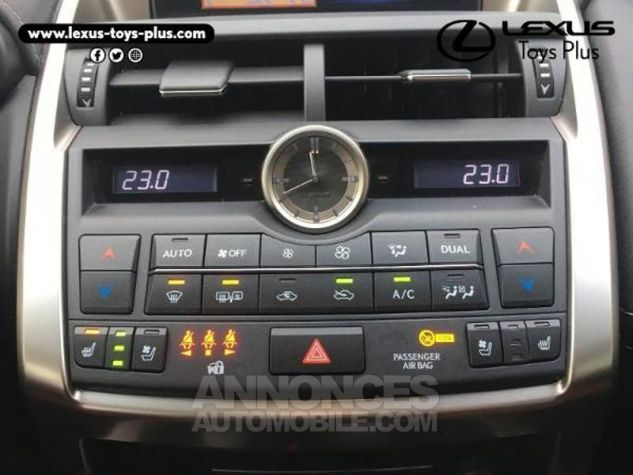 Lexus NX 300h 4WD Executive GRIS F Occasion - 9
