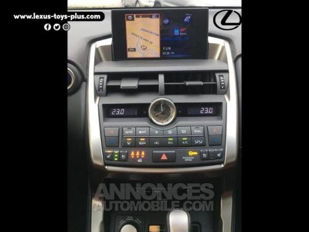 Lexus NX 300h 4WD Executive GRIS F Occasion - 10