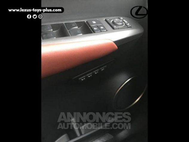 Lexus NX 300h 4WD Executive GRIS F Occasion - 11