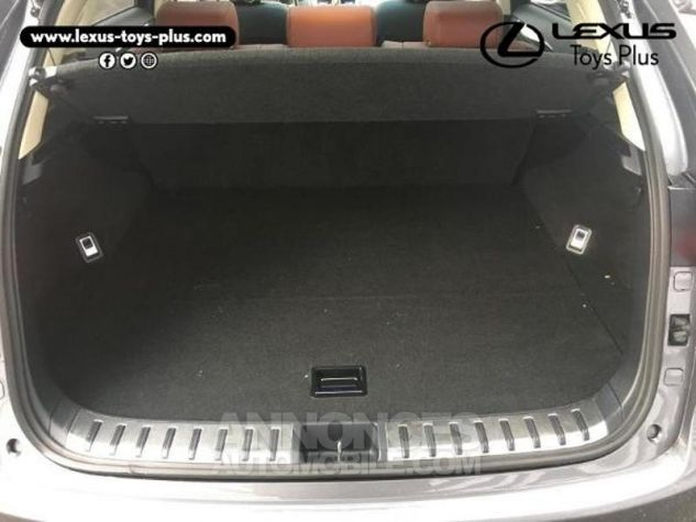 Lexus NX 300h 4WD Executive GRIS F Occasion - 14