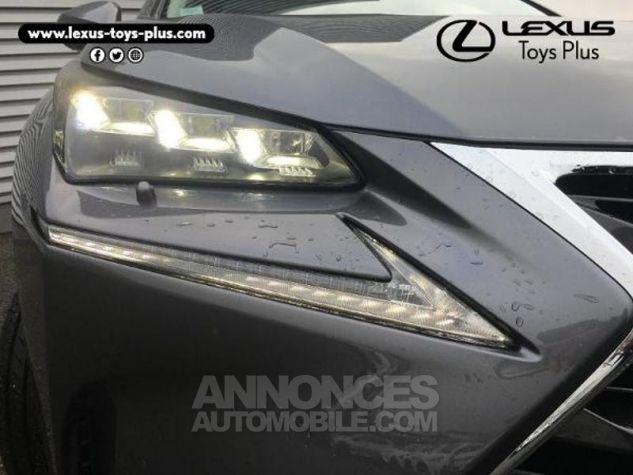 Lexus NX 300h 4WD Executive GRIS F Occasion - 19