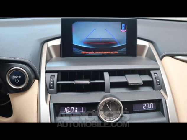 Lexus NX 300h 4WD Luxe ROUGE CRISTAL Occasion - 8
