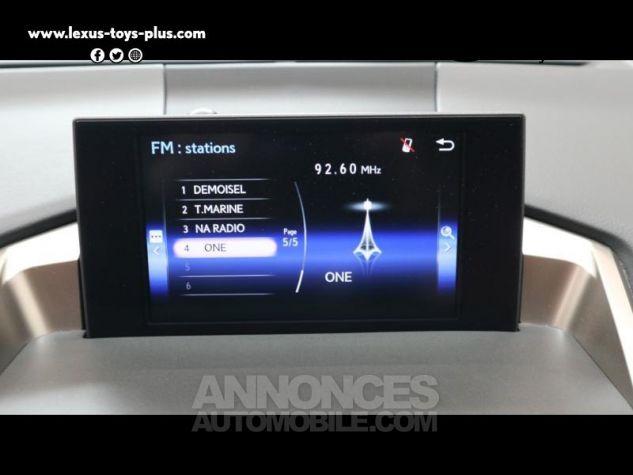 Lexus NX 300h 4WD Luxe GRIS MERCURE Occasion - 13