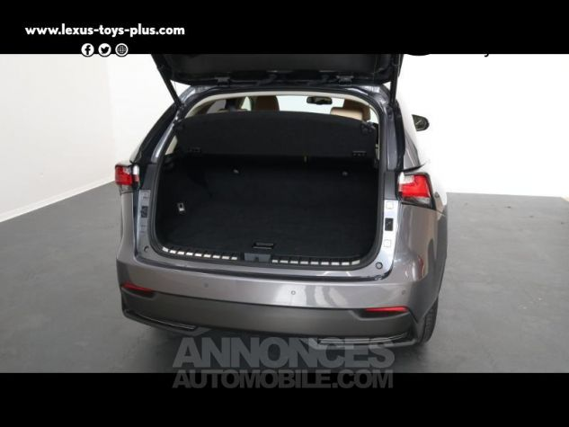 Lexus NX 300h 4WD Luxe GRIS MERCURE Occasion - 15
