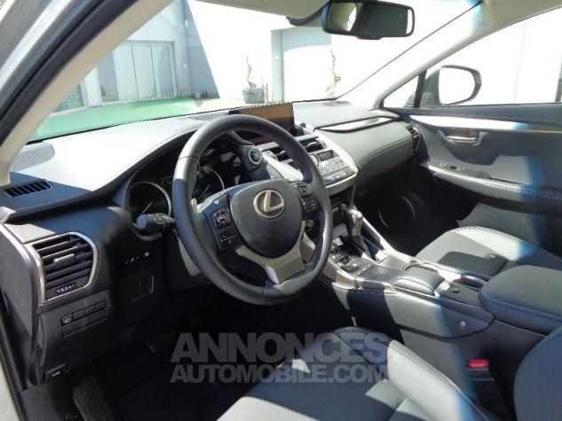 Lexus NX 300H HYBRIDE 4WD MC PACK BUSINESS 18 GRIS PLATINE Occasion - 7
