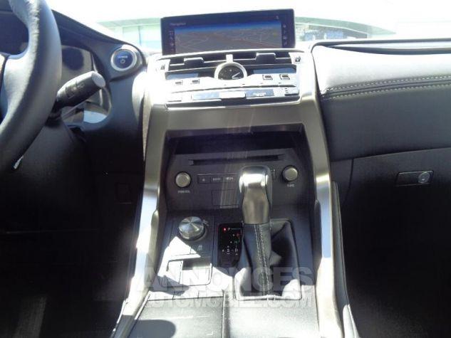 Lexus NX 300H HYBRIDE 4WD MC PACK BUSINESS 18 GRIS PLATINE Occasion - 13