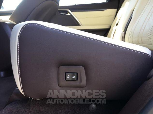 Lexus RX 450h 4WD Executive NOIR Occasion - 14