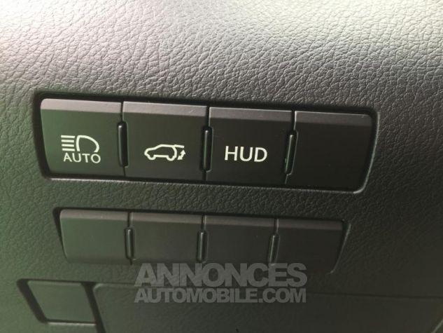 Lexus RX 450h 4WD F SPORT Euro6d-T NOIR GRAPHITE Occasion - 17
