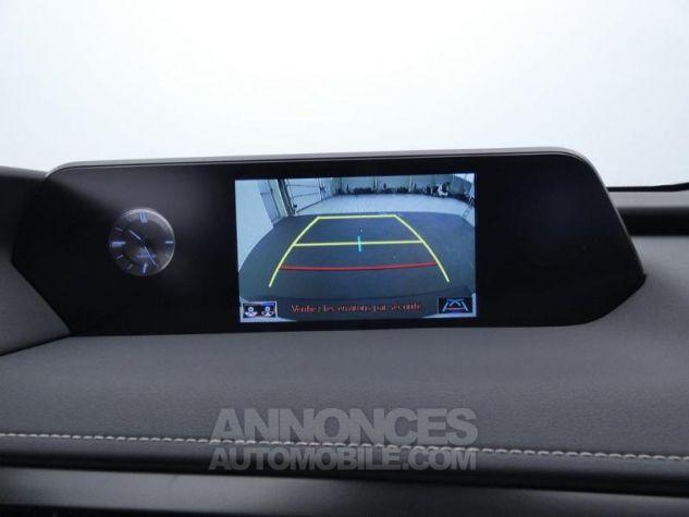 Lexus UX 250h 2WD Luxe BLANC ARCTIQUE Occasion - 15