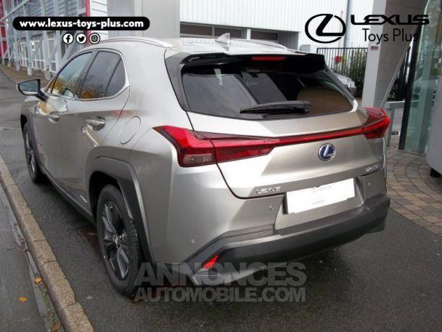 Lexus UX 250h 2WD Luxe Gris Titane Occasion - 1
