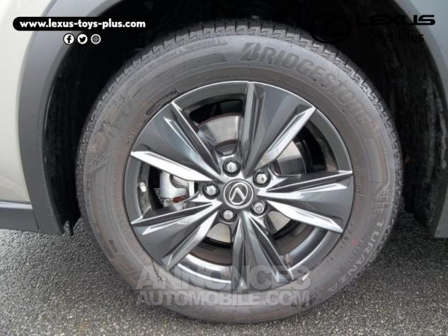Lexus UX 250h 2WD Luxe Gris Titane Occasion - 11