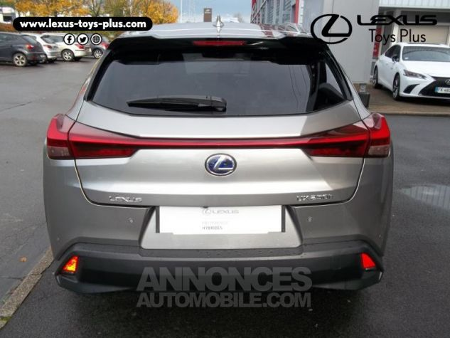 Lexus UX 250h 2WD Luxe Gris Titane Occasion - 12