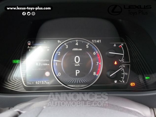 Lexus UX 250h 2WD Luxe Gris Titane Occasion - 18