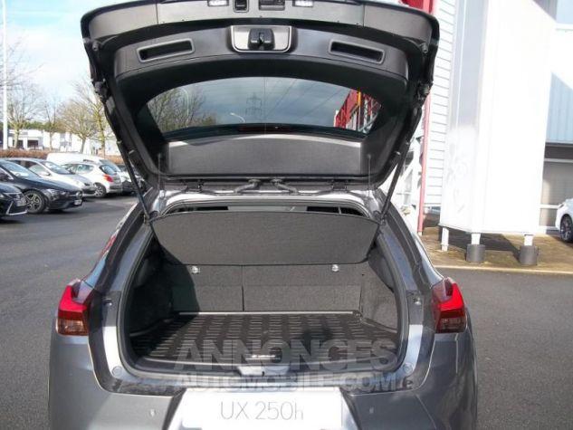 Lexus UX 250h 4WD Luxe Gris Mercure Occasion - 9