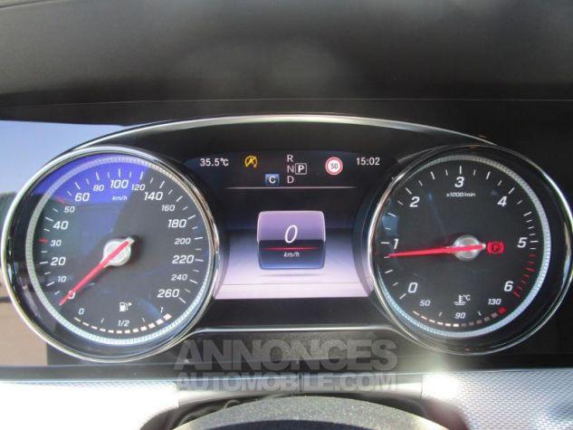 Mercedes Classe E 220 d 194ch Sportline 9G-Tronic GRIS Occasion - 9