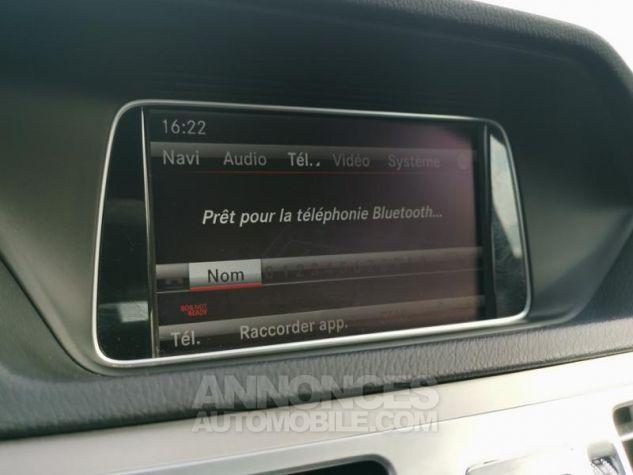Mercedes Classe E 250 BlueTEC Executive 4Matic 7G-Tronic Plus ZP ARGENT IRIDIUM Occasion - 9