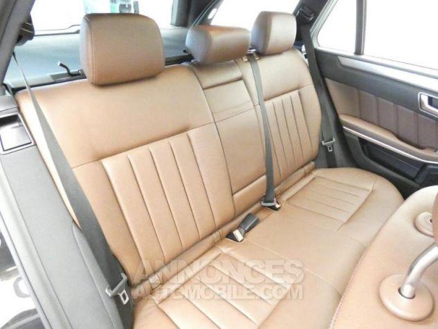Mercedes Classe E 300 BlueTEC HYBRID Executive 7G-Tronic Plus Noir Obsidienne Occasion - 15