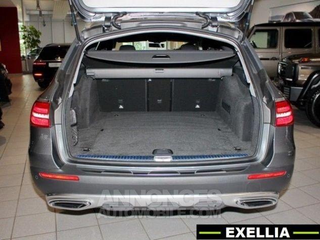 Mercedes Classe E ALL TERRAIN 220 D 4 MATIC  GRIS SELENIT  Occasion - 10