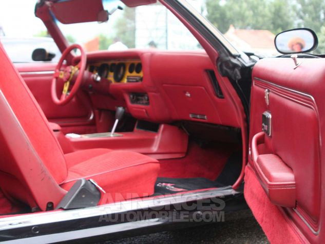 Pontiac Trans Am 1979  Occasion - 8