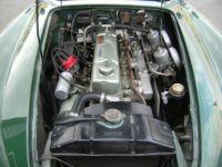 Austin Healey 100 100/6 - <small></small> 58.500 € <small>TTC</small> - #15