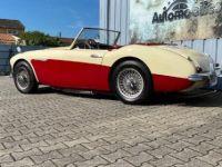 Austin Healey 100 100/6 BN4 - <small></small> 36.500 € <small>TTC</small> - #3