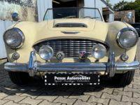 Austin Healey 100 100/6 BN4 - <small></small> 36.500 € <small>TTC</small> - #7