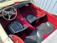 Austin Healey 100 100/6 BN4 - <small></small> 36.500 € <small>TTC</small> - #13