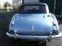 Austin Healey 3000 BJ7 - <small></small> 59.000 € <small>TTC</small> - #4