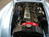 Austin Healey 3000 BJ7 - <small></small> 59.000 € <small>TTC</small> - #17